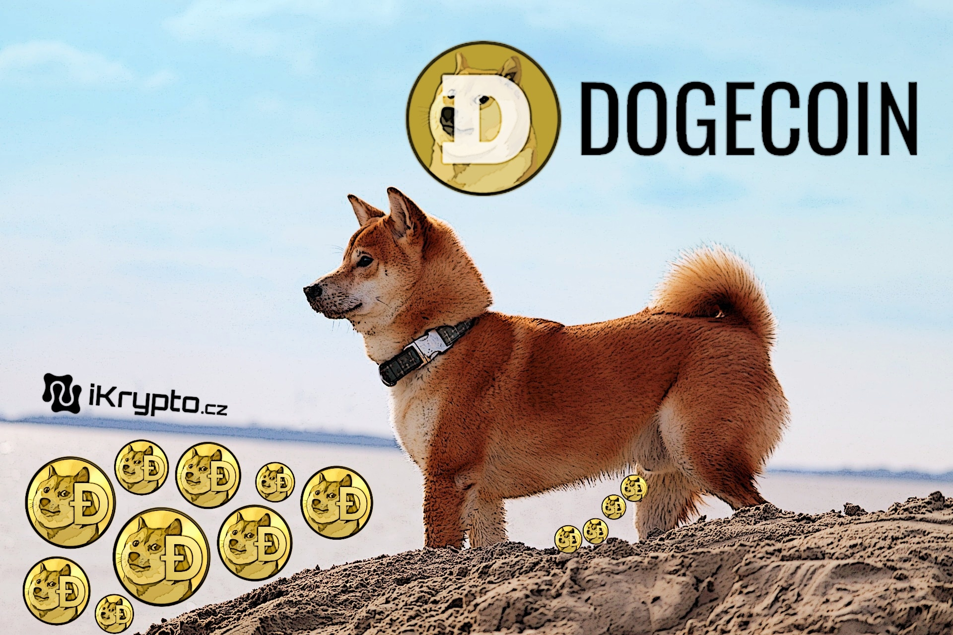 kryptomena dogecoin